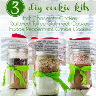For My Fellow Procrastinators: 3 DIY Cookie Mix Kits {and printables}