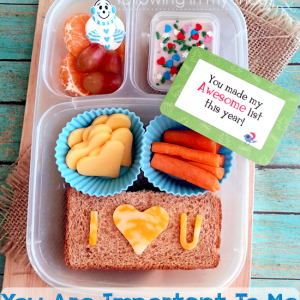 I Heart Lunch: You Are Important To Me {a special bento}
