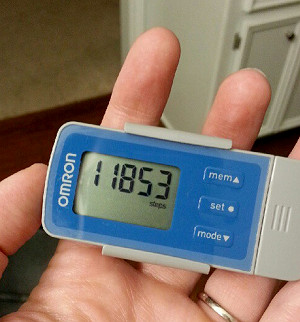 omron pedometer -- helping me lose WEIGHT!