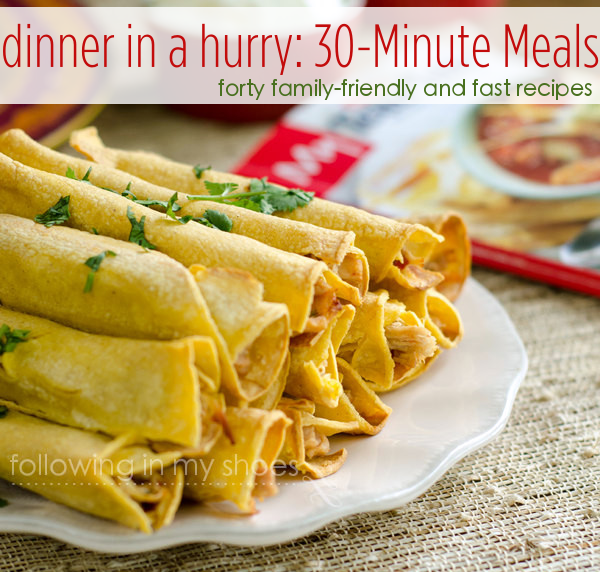 Dinner in a hurry 30 minute meals sisterspd