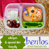 Allergy Friendly Bentos and School Lunches