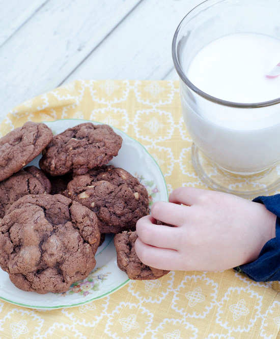 Double Chocolate Toasted Hazelnut Cookies are NOT a thief deterrent