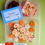 Allergy Friendly Lunch Ideas. {I Heart Lunch Guest Post}
