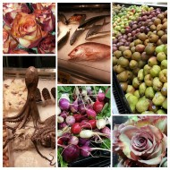 Austin's Central Market — a Food Geek's Dream Store