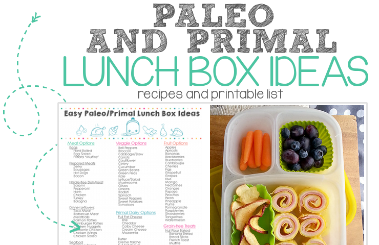paleo primal school lunch ideas FEATURED