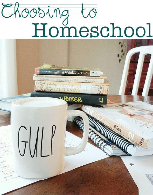 homeschooling, deciding to homeschool, texas homeschool